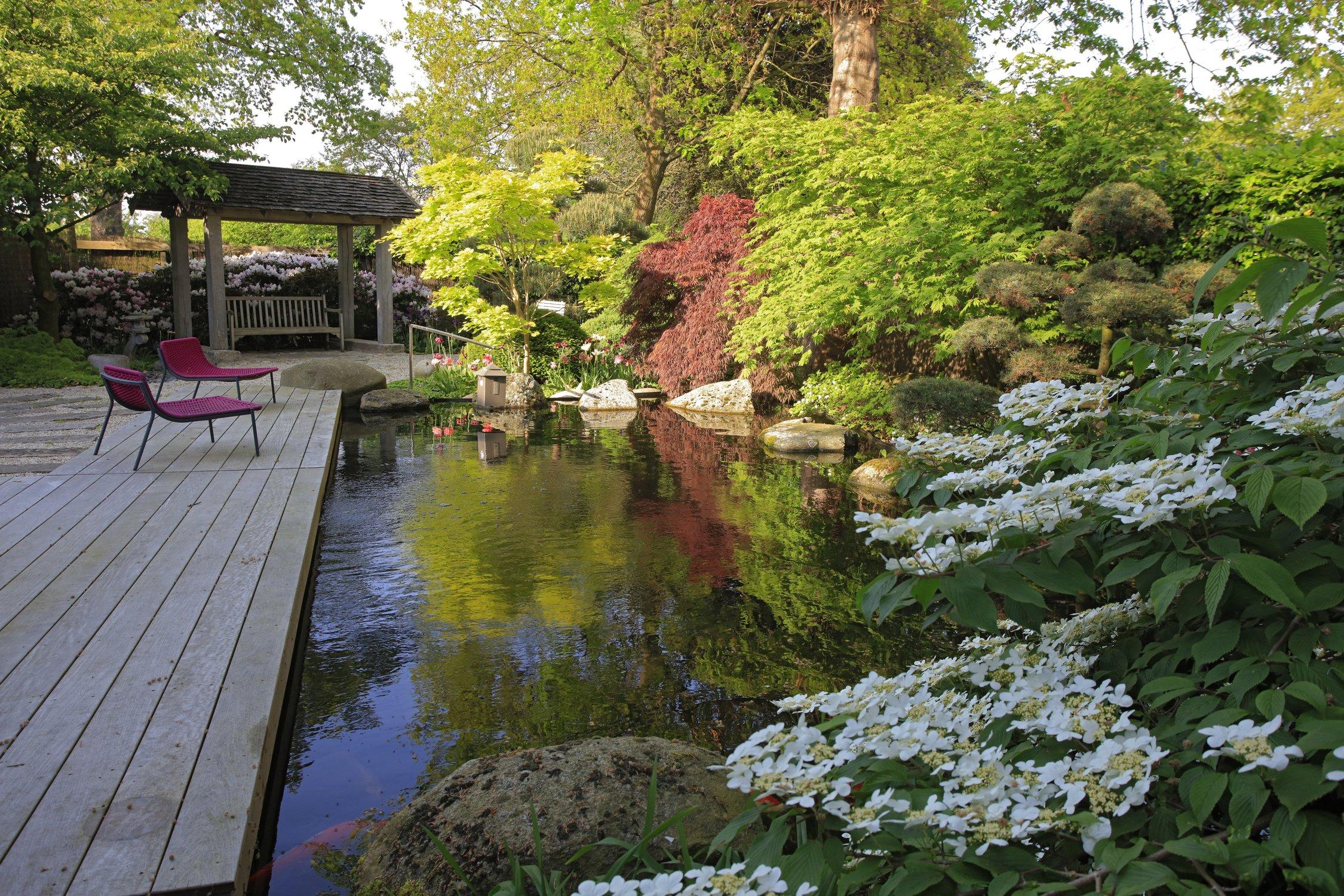 Projekte Bahl Gmbh Garten Landschafts Und Schwimmteichbau